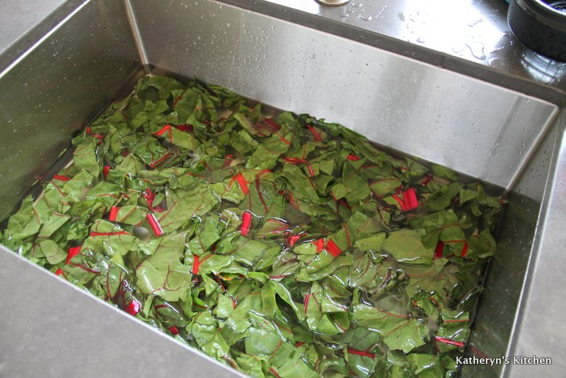 Washing Swiss Chard