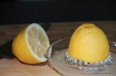 Palm Springs Lemons